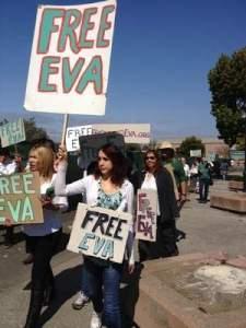 Vivi & free eva sign